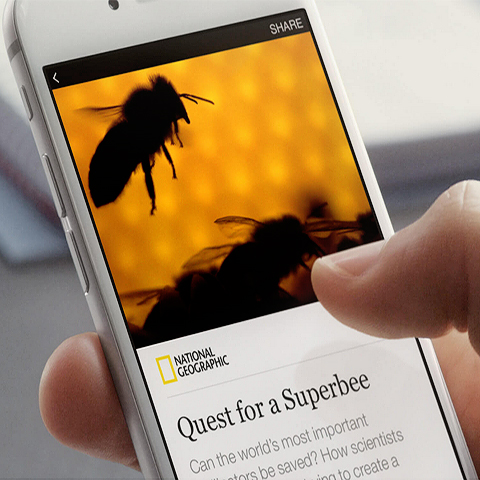 Is Facebook's Instant Articles a sly move against Net Neutrality?